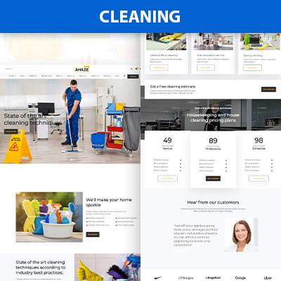 Cleaning wordpress theme
